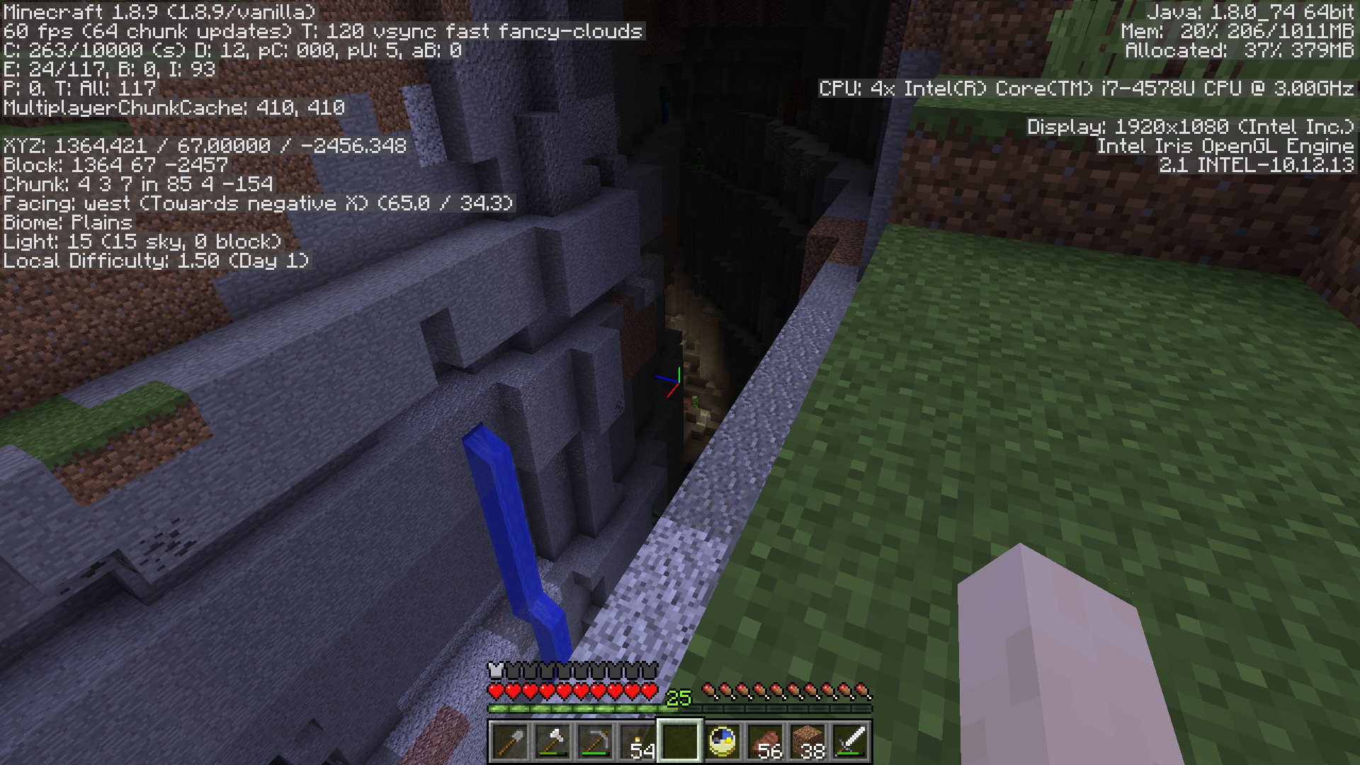 Creeper in Ravine